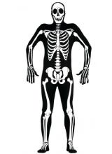 1581111781_esqueleto.jpg