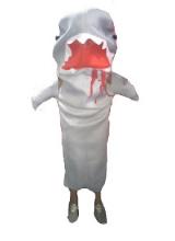 1581345921_tiburon.jpg