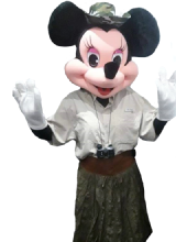 1581458177_minnie-safari.png